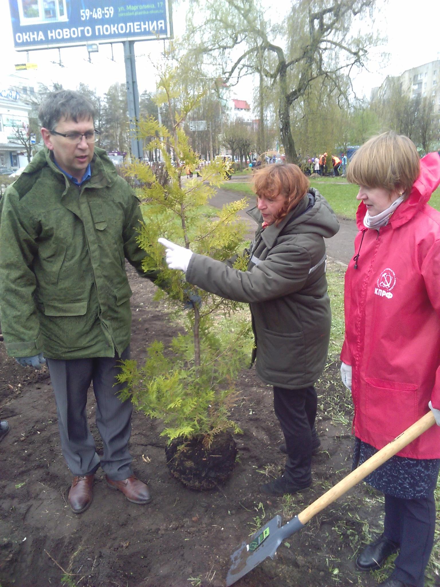 Посадил дерево – посади рядом еще два!