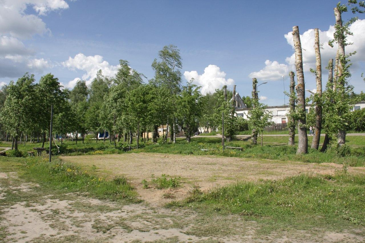 Самоорганизация жителей в селе Великом