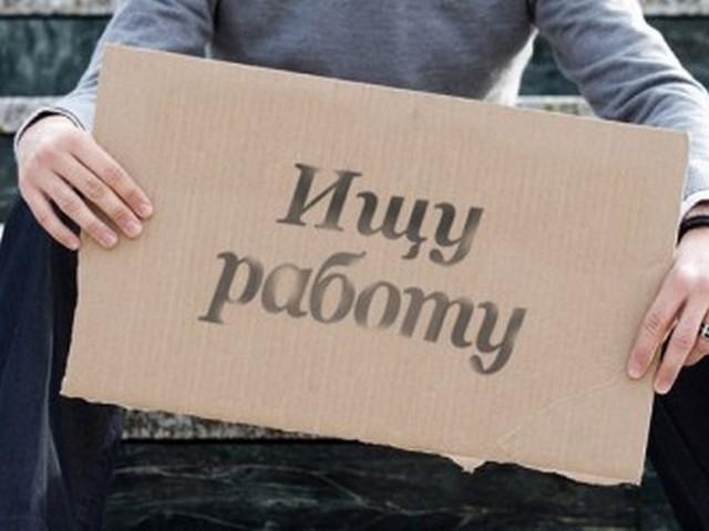 Безработица в Ярославской области