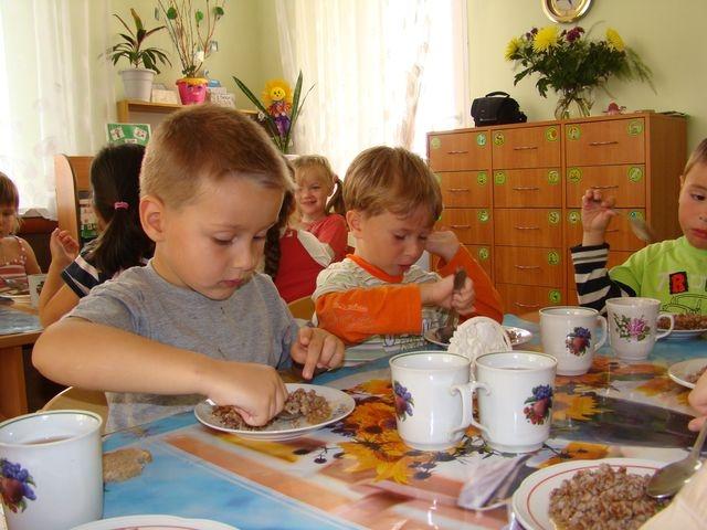 Был ли сговор при организации питания в детских садах Ярославля?