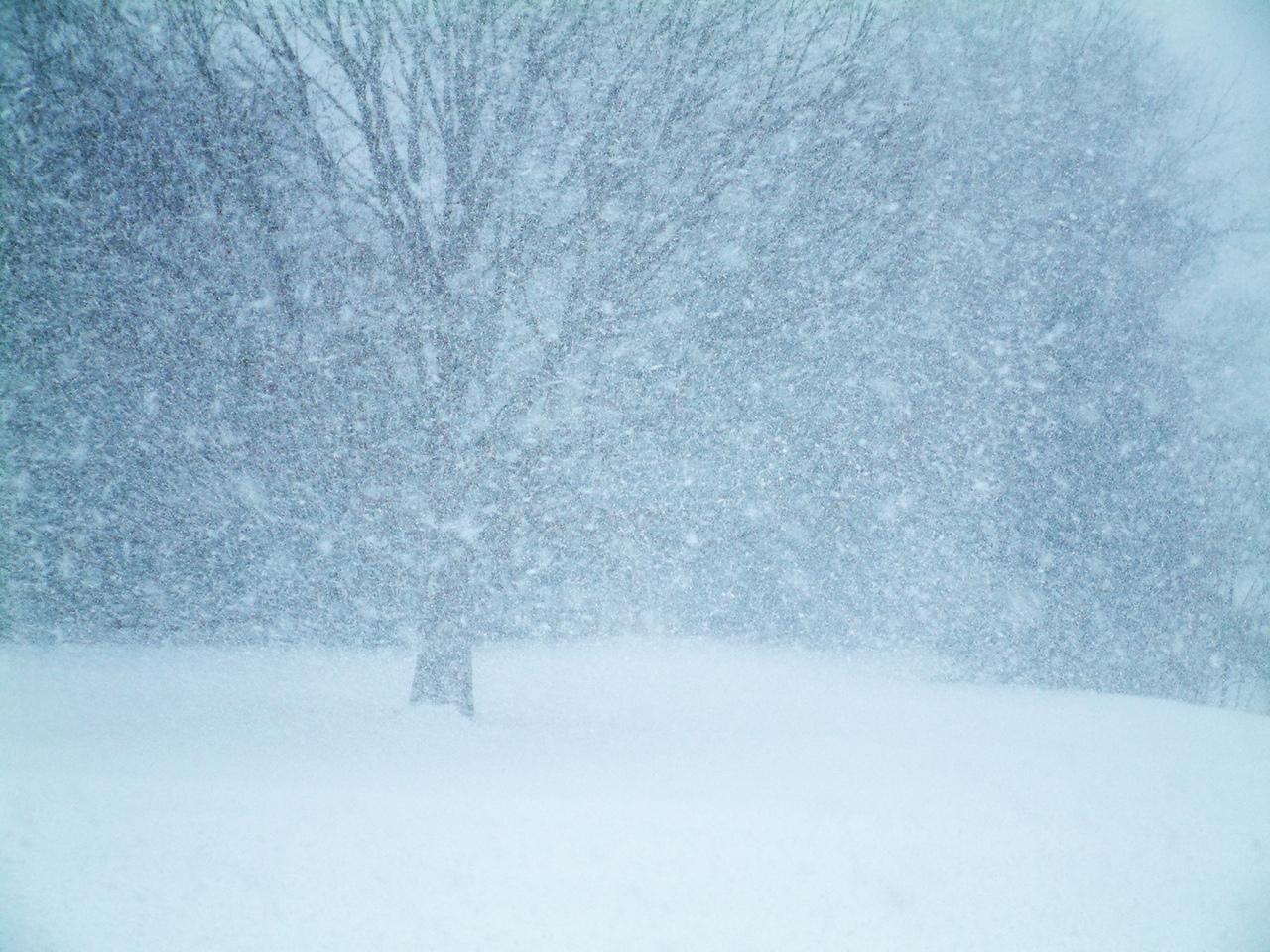 Снегопад не прекратится ещё долго