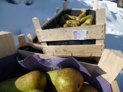 75 килограммов польских груш отправили под трактор
