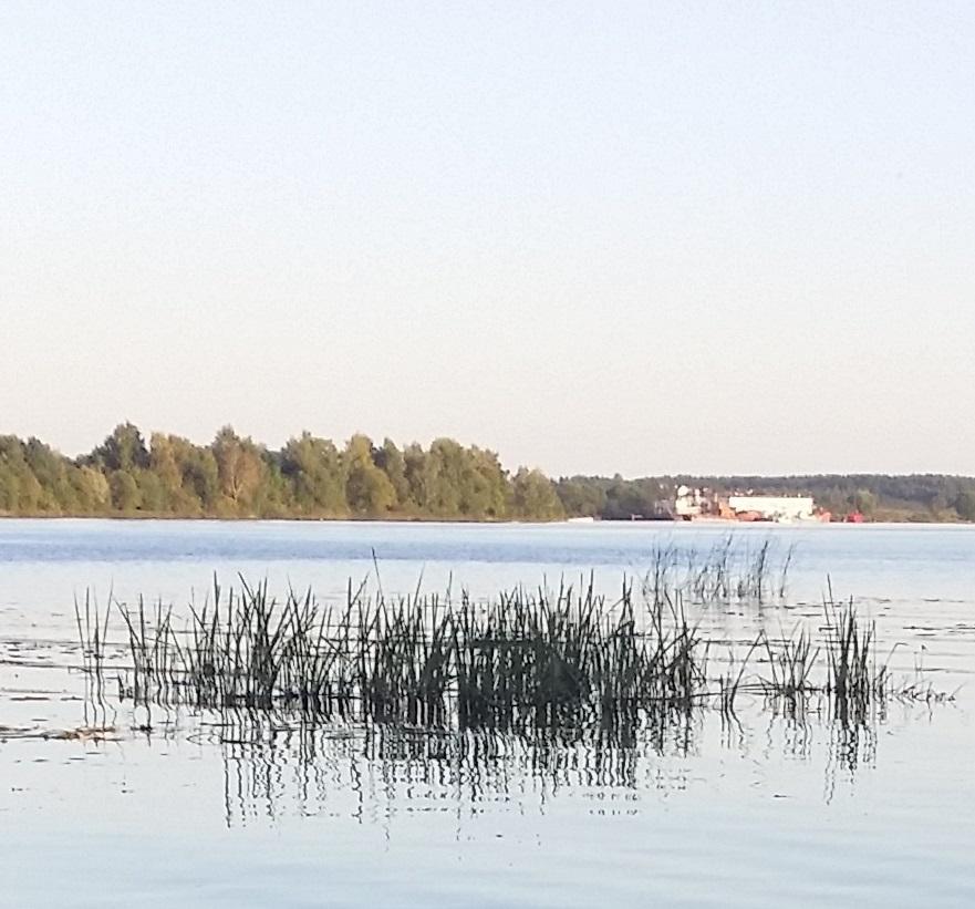 Главную русскую реку превратили в ядовитую помойку