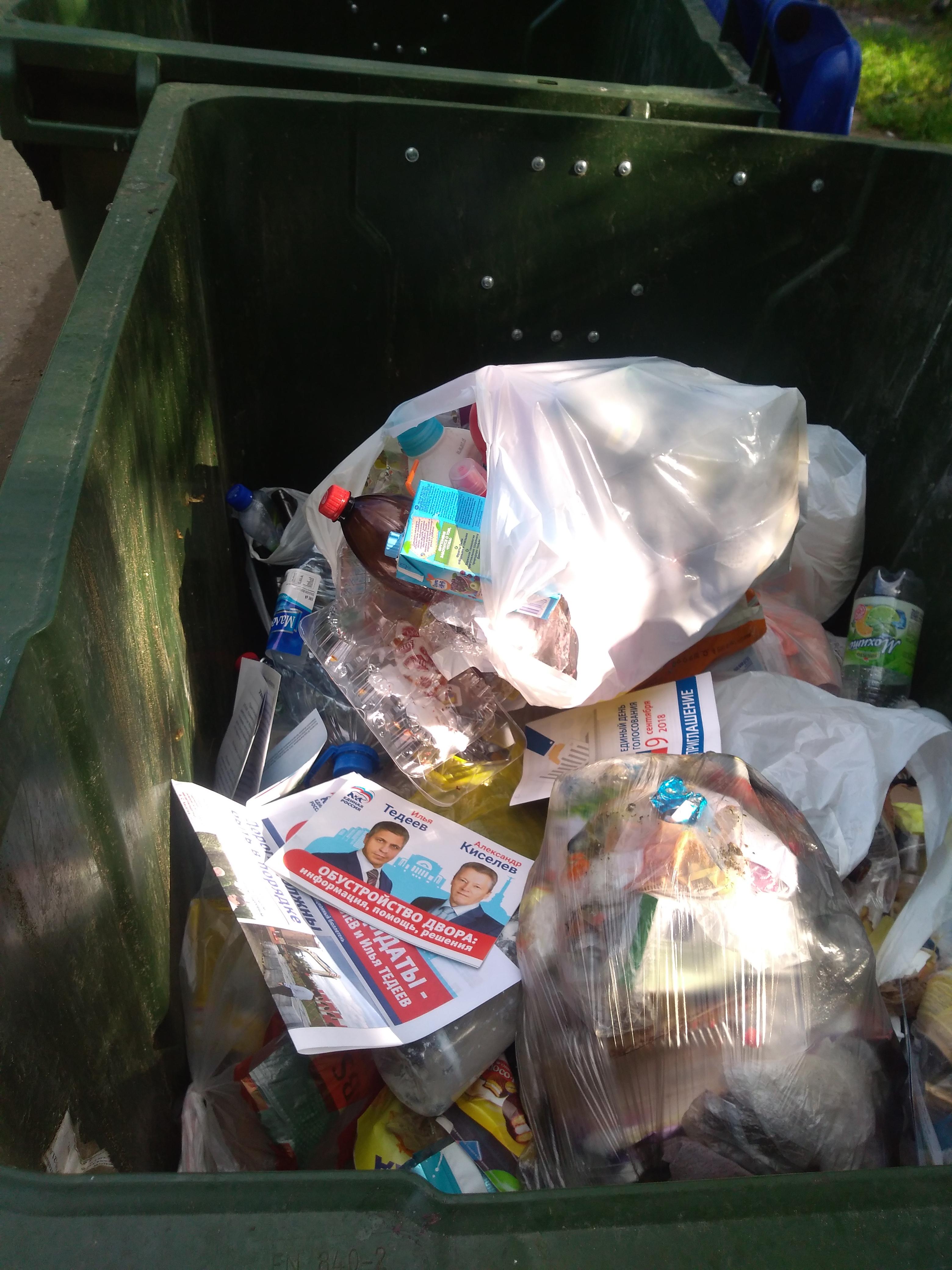Буклетами кандидатов от партии власти завалены мусорные контейнеры