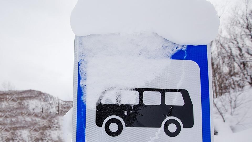 Дорога есть, автобуса нет