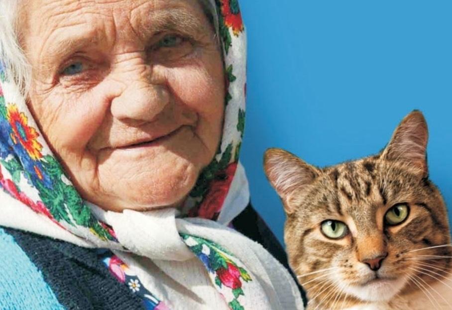 Государство приравнивает по содержанию одного пенсионера к полутора кошкам