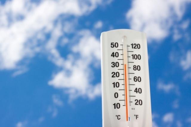 Аномальная жара в Ярославле продолжается