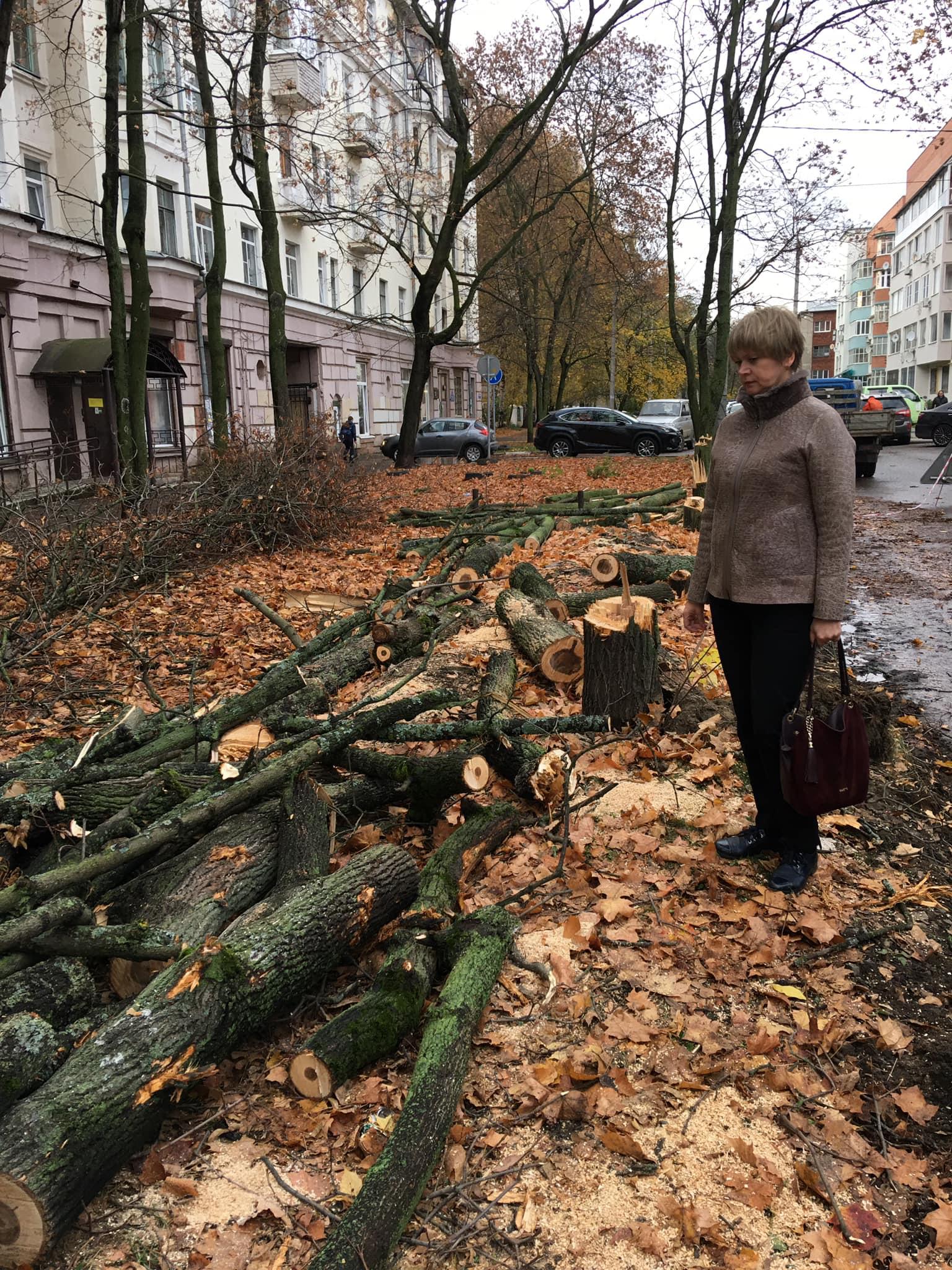 Жители пожаловались — Елена Кузнецова выехала на место