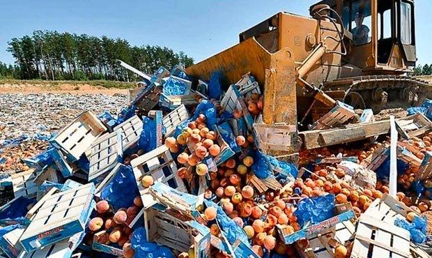 В России продлили срок уничтожения санкционной продукции