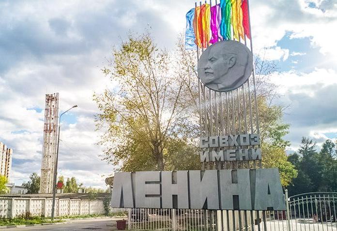 В Совхозе имени Ленина не будут вводить обязательную вакцинацию